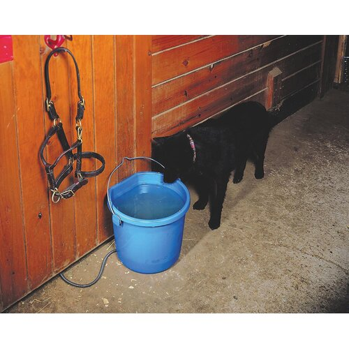 Allied Precision Industries Heated Flat Back Bucket for Horses and Dogs
