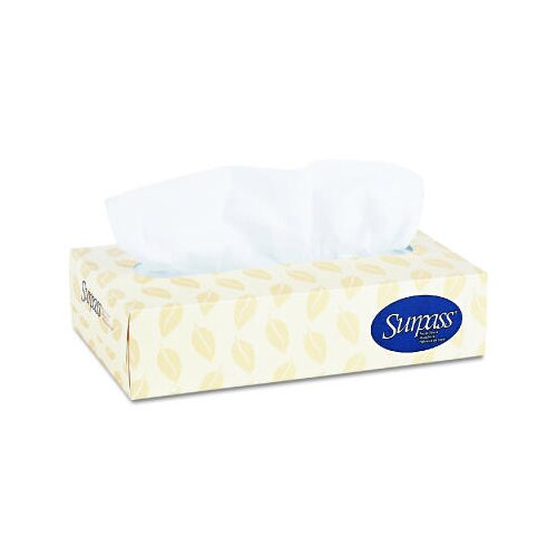 Kimberly-Clark Surpass 2-Ply Facial Tissues - 100 Tissues per Box / 12 Boxes