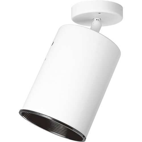 Directional Cylinder Wall Fixture / Semi Flush Mount