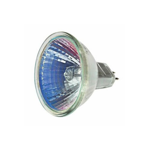 Lamp with Narrow Beam Halogen Light Bulb