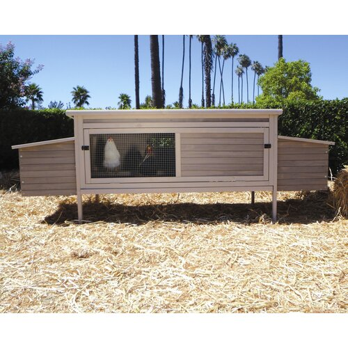 Precision Pet Products Hen Den Chicken Coop with Nesting Box and Roosting Bar