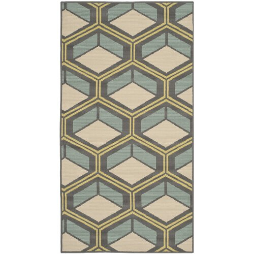 Hampton Dark Grey / Light Blue Outdoor Rug