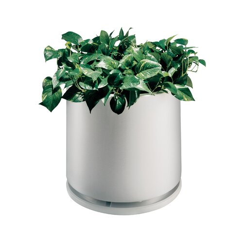 Commercial Zone Planter with Water Dish