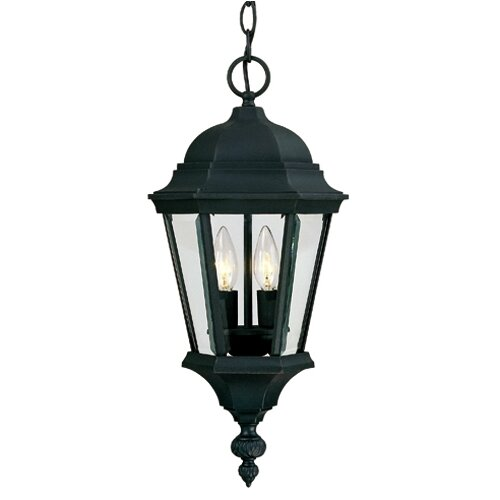 Wildon Home ® Alice 2 Light Outdoor Hanging Lantern
