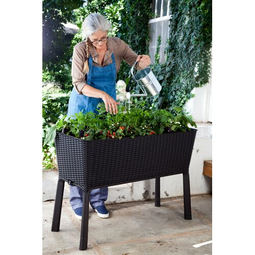 Rectangle Raised Flower Box Planter Bed 2 Tier Soil Pots: Keter Easy Grow Rectangle Raised Rattan Garden Planter