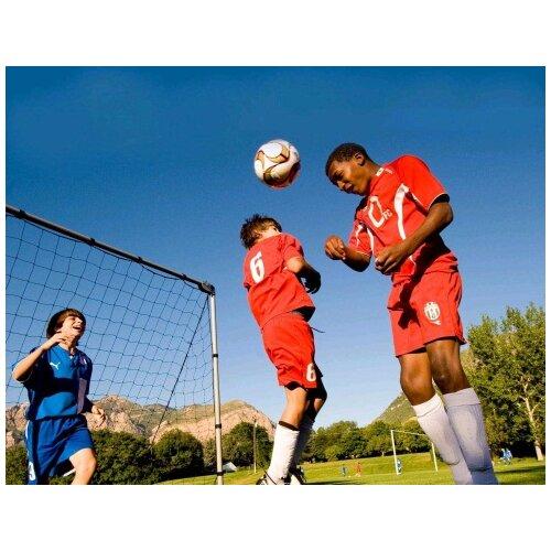 Lifetime Adjustable Soccer Goal