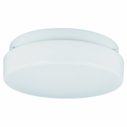 2 Light Fluorescent Wall Fixture / Flush Mount