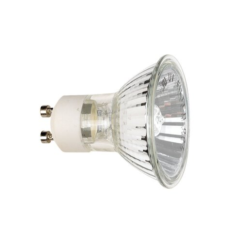 50W Frosted Halogen Light Bulb