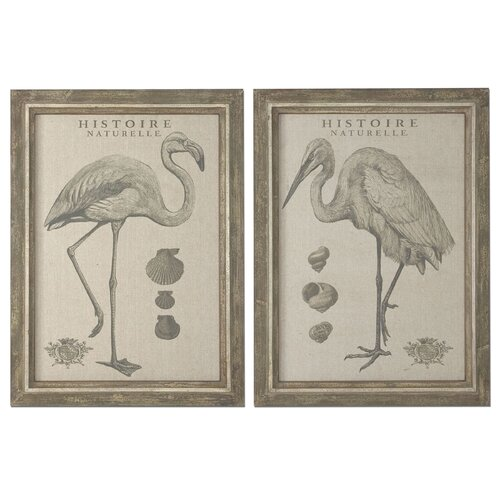 Natural History 2 Piece Framed Painting Print Set
