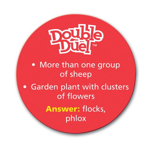 Learning Resources Double Duel A Sound-Alike Word Game