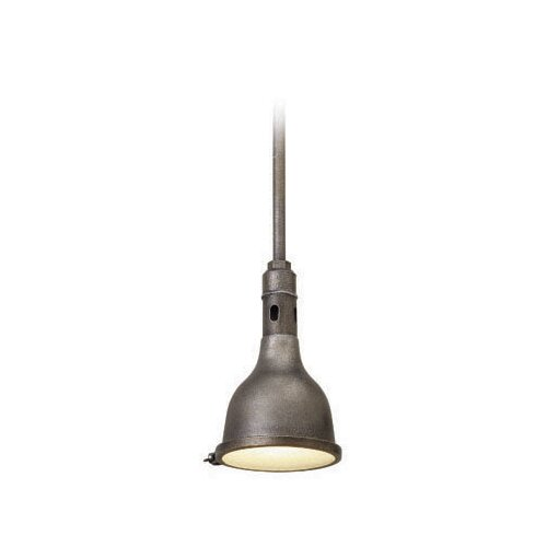 Telegraph Hill 1 Light Mini Pendant