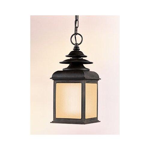 Troy Lighting Adams 1 Light Hanging Lantern