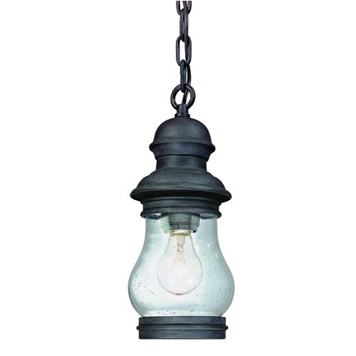 Troy Lighting Hyannis Port 1 Light Hanging Lantern