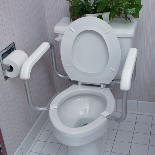Briggs Healthcare Toilet Safety Frame