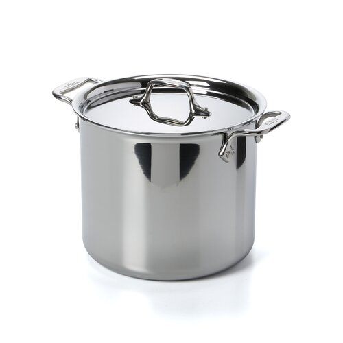Stainless Steel 7-qt. Stock Pot with Lid