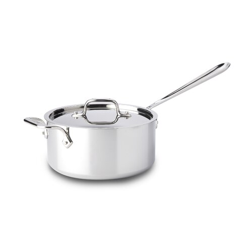 Stainless Steel Saucepan with Lid and Loop