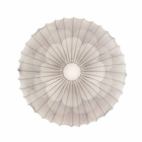 Muse Flower Ceiling Light (2G Fluorescent)