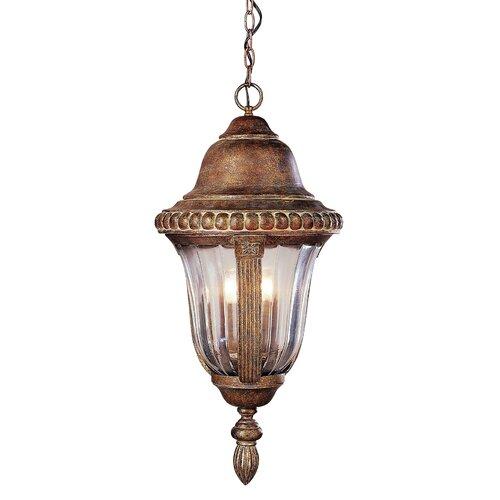 TransGlobe Lighting Outdoor 4 Light Hanging Lantern