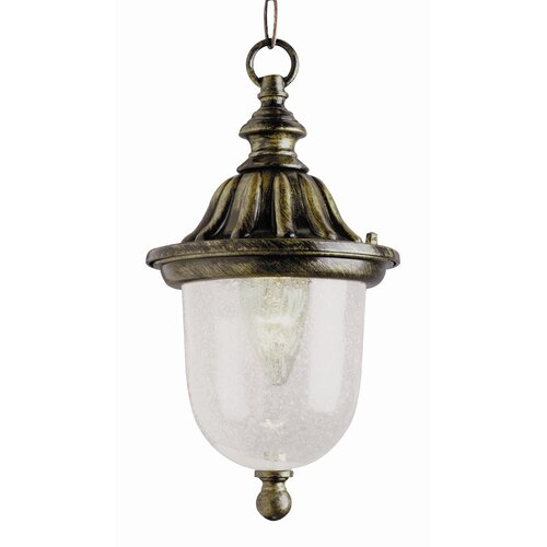 TransGlobe Lighting Outdoor 1 Light Hanging Lantern