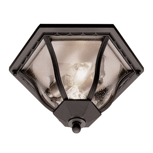 TransGlobe Lighting Outdoor 2 Light Flush Mount