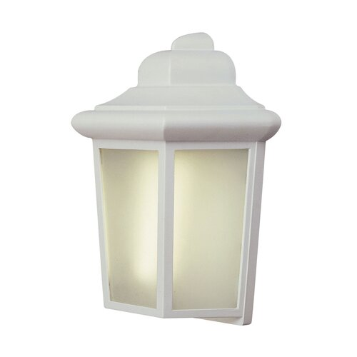TransGlobe Lighting 1 Light Outdoor Pocket Lantern