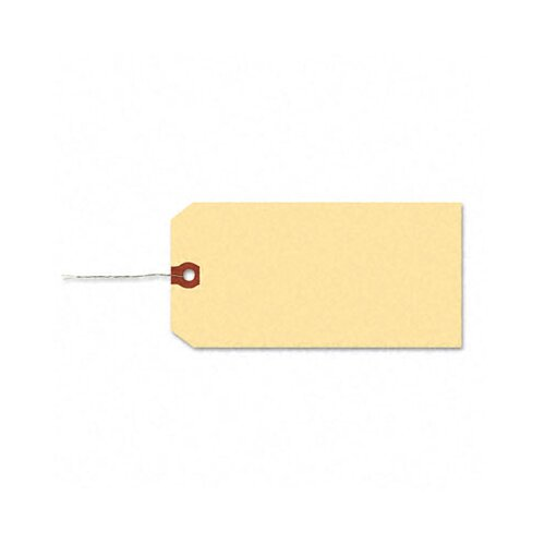 Avery Consumer Products Paper/Double Wire Shipping Tags, 4 1/4 X 2 1/8 (1,000/Box)