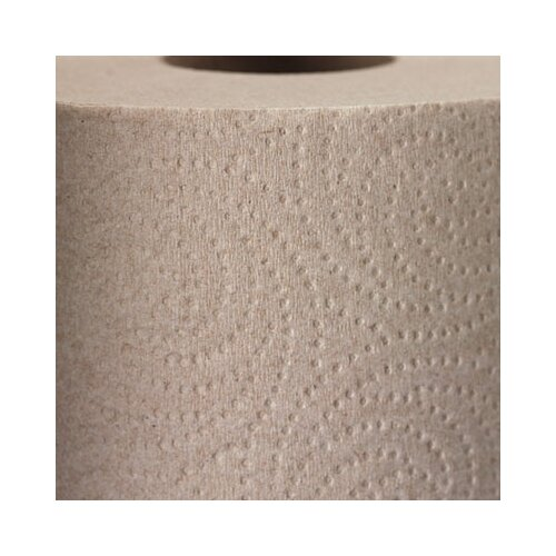 Georgia Pacific Envision Perforated 2-Ply Paper Towel - 250 Sheets per Roll / 12 Rolls per Carton
