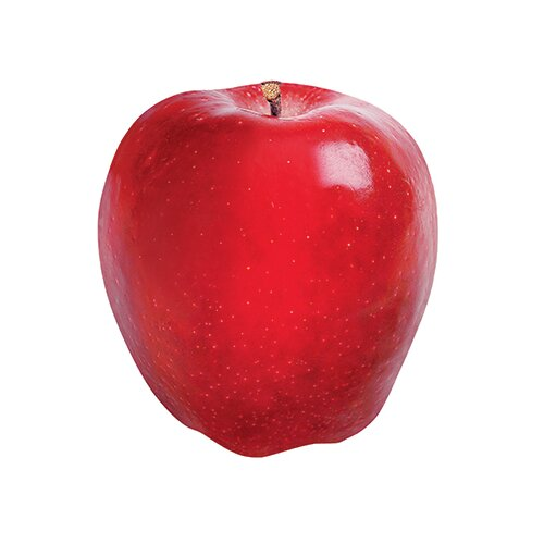 Trend Enterprises Classic Accents Red Apple Discovery