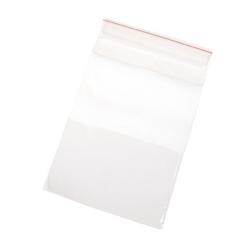 "Anglers Company Ltd. Handi-Loc Poly Bags, 4""x6"", Reclosable, 100/BX, Clear"