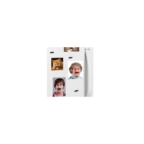 Kikkerland Mustache Magnets