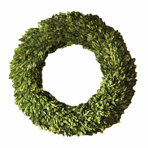 Napa Home and Garden Preserved Boxwoods Preserved Greens Wreath