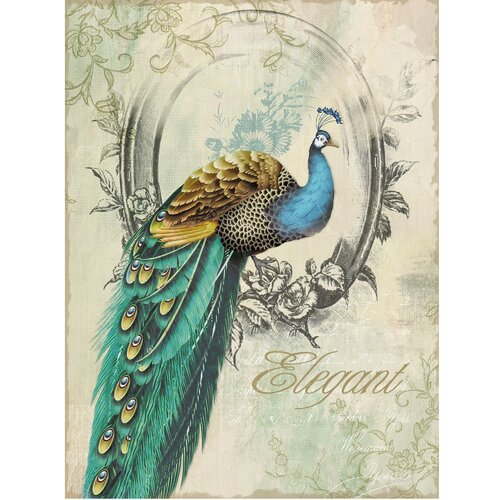Revealed Artwork Peacock Poise I Graphic Art on Canvas