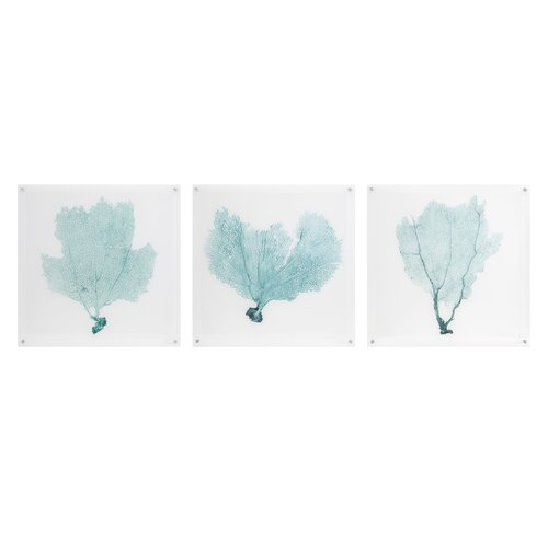 Sea Fan 3 Piece Painting Print Set