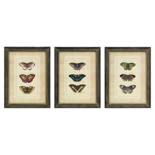 IMAX Butterfly 3 Piece Graphic Plaque Set