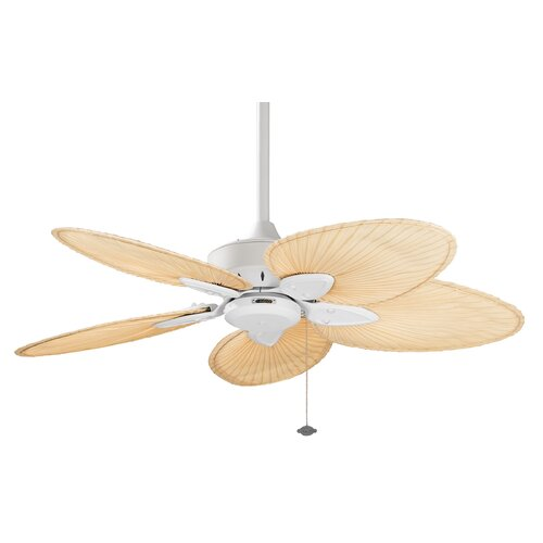"Fanimation 44"" Windpointe 5 Blade Ceiling Fan"