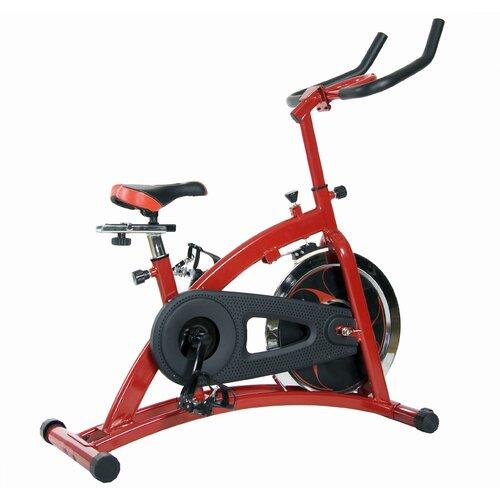 Body Champ Pro Cycle Trainer Bike