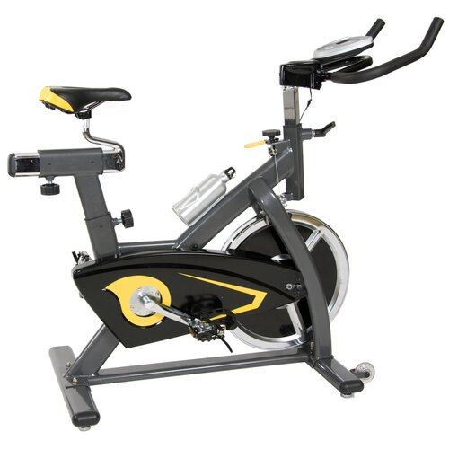 Body Flex Body Champ Pro Indoor Cycling Bike