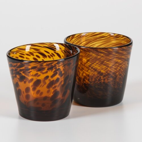 Sahara Tortoise Glassware (Set of 8)