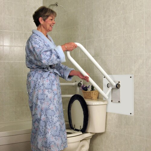 HealthCraft Wall Mount Plate for PT Rail