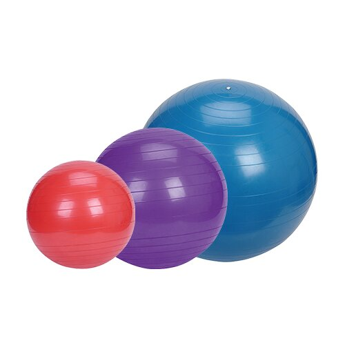 Sunny Health & Fitness Exercise Ball