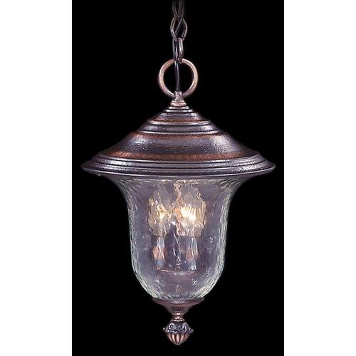 Framburg Carcassonne 3 Light Outdoor Hanging Lantern