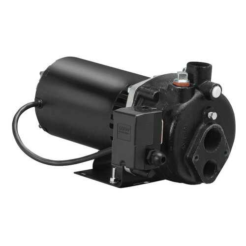 WAYNE 1 HP Cast-Iron Convertible Well Jet Pump