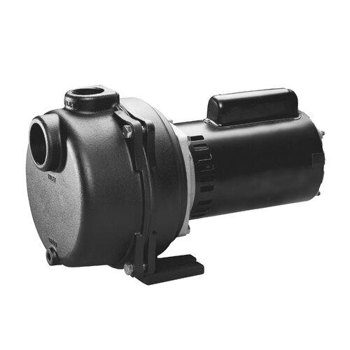 WAYNE 2 HP Cast-Iron Lawn Sprinkling Pump