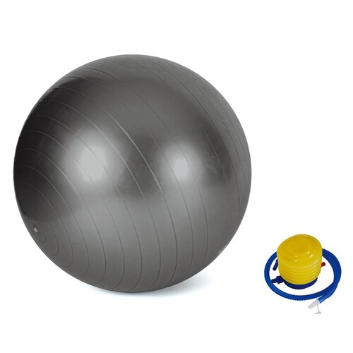 Valor Athletics Anti Burst Gym Exercise Ball
