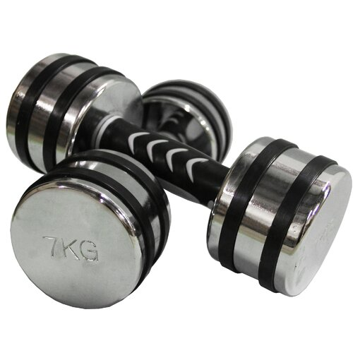Dumbbells (Set of 2)