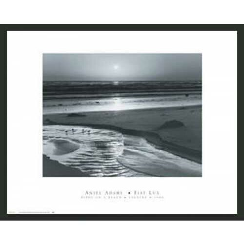 Frames By Mail 'Birds on a Beach' by Ansel Adams Framed Photographic Print