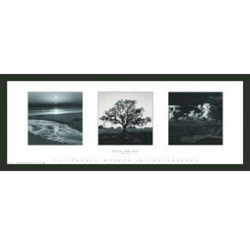 Frames By Mail 'Trilogy' by Ansel Adams Framed Photographic Print