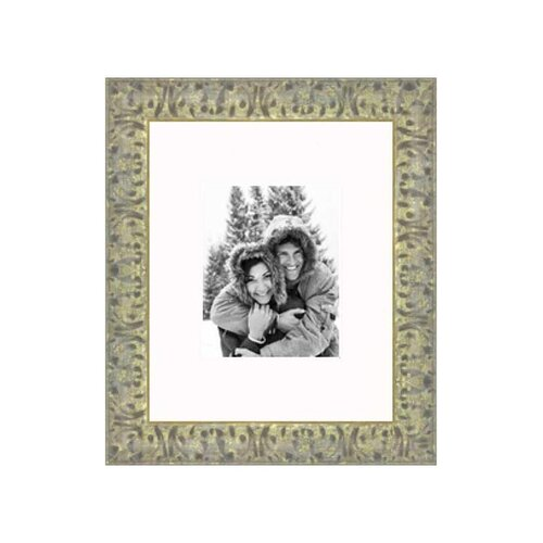 "Frames By Mail 16"" x 20"" Champaign Frame in Antiqued Gold"