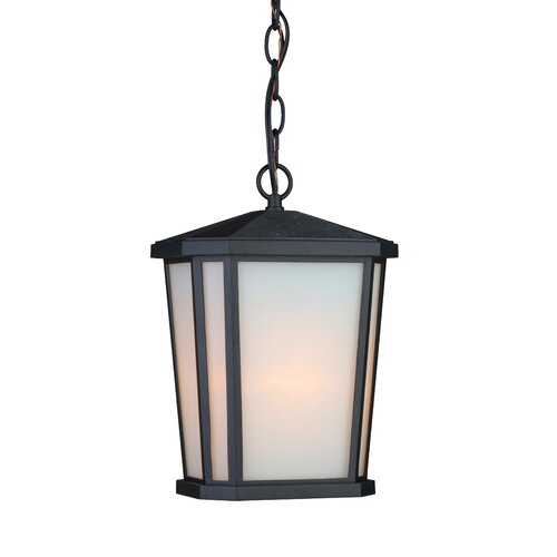 Artcraft Lighting Hampton 1 Light Outdoor Hanging Lantern