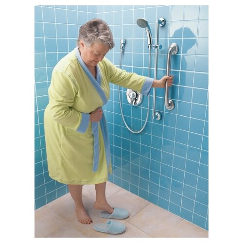 Moen Commercial Handheld Shower System